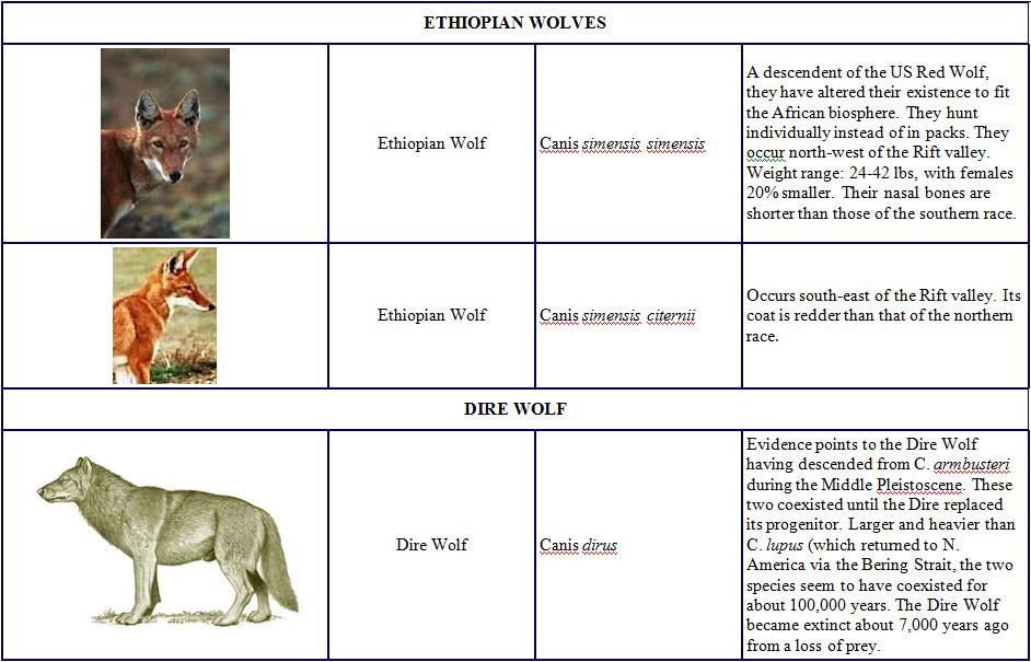 Species and Subspecies Sp15