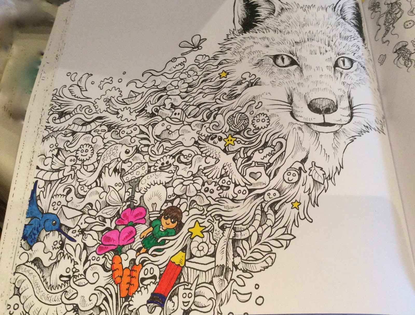 Off The Shelf Books Animorphia Adult Colouring Book By Kerby
