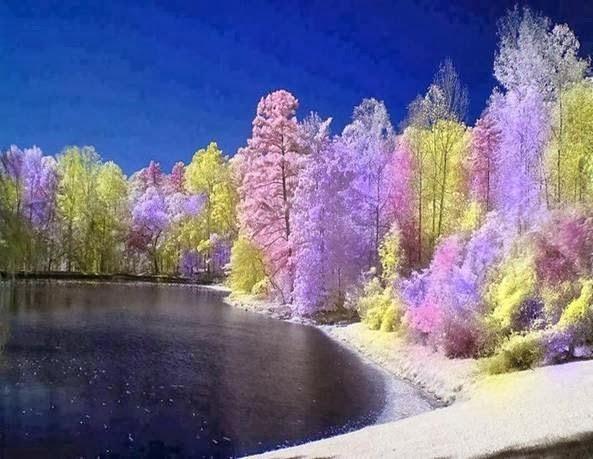 Los colores de la esperanza