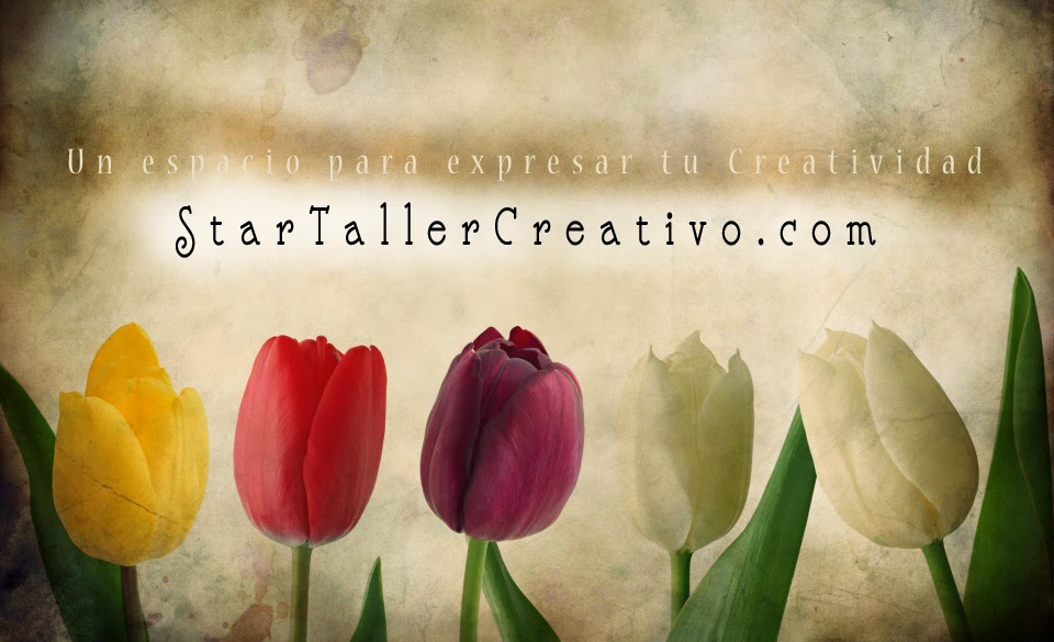 Star Taller Creativo
