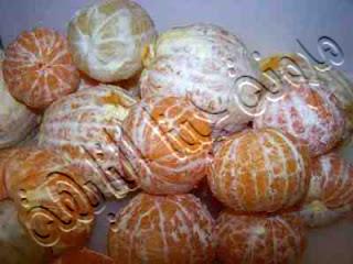 طريقة حفظ البرتقال فى الفريزر طريقة تخزين البرتقال فى الديب فريزر بالصور