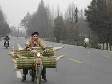 Pedalando China afora
