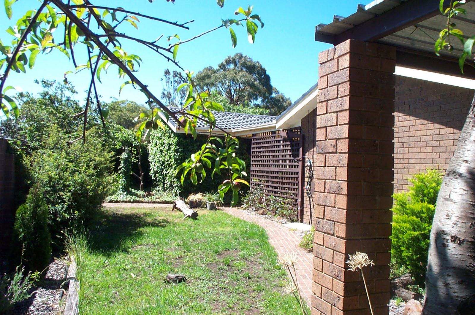 Garden Design Vegetable Patch : How to make raised garden beds for vegetables the greening of gavin