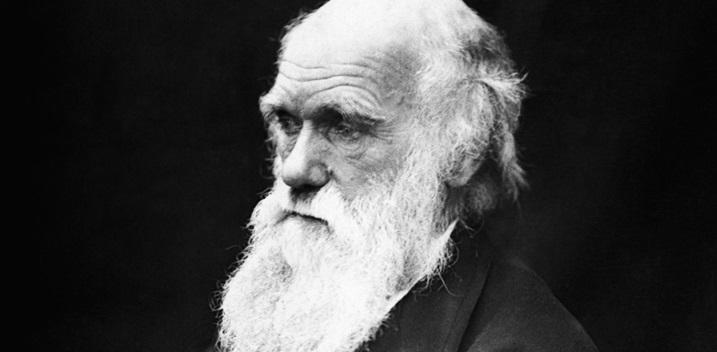 fotografia antiga de charles darwin de perfil com barba branca e longa