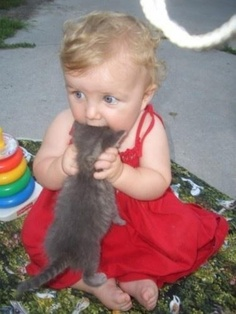 Baby and Kitten Love