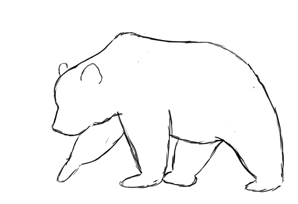 how to draw bear - photo #21