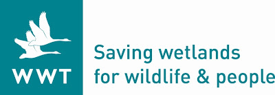 Wildfowl and Wetlands Trust logo