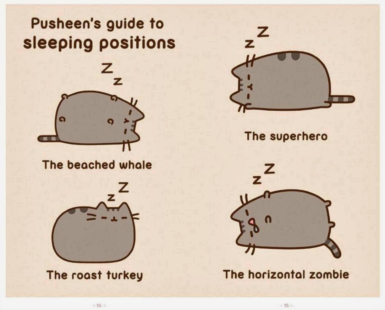 Feeling Fictional Review I Am Pusheen The Cat Claire