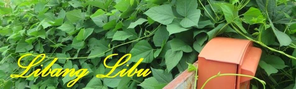 Libang Libu