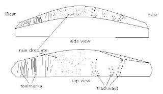 trackwayslab1.JPG