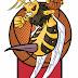 Hull Stingers Logo