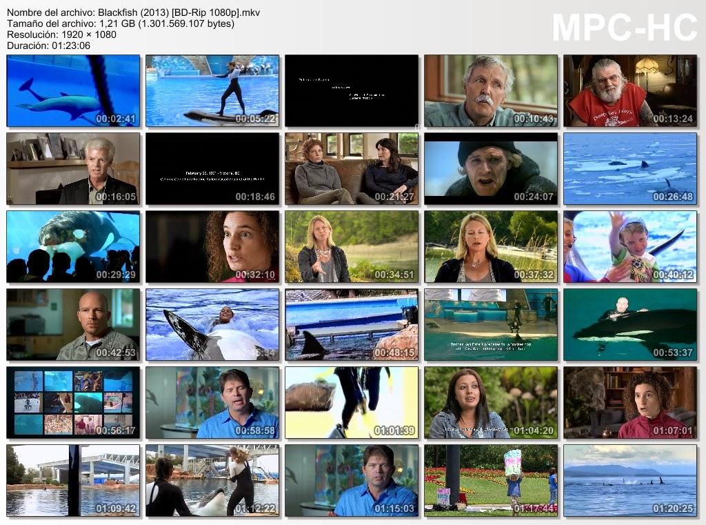 Blackfish (2013) [1080p.]