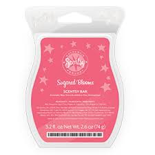 https://happyaboutscents.scentsy.us/Scentsy/Buy/Category/1264