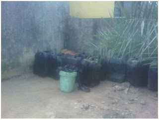 Woman (Pictured) Arrested For Allegedly Siphoning Fuel From NNPC Pipeline In Her Backyard For 3 Years