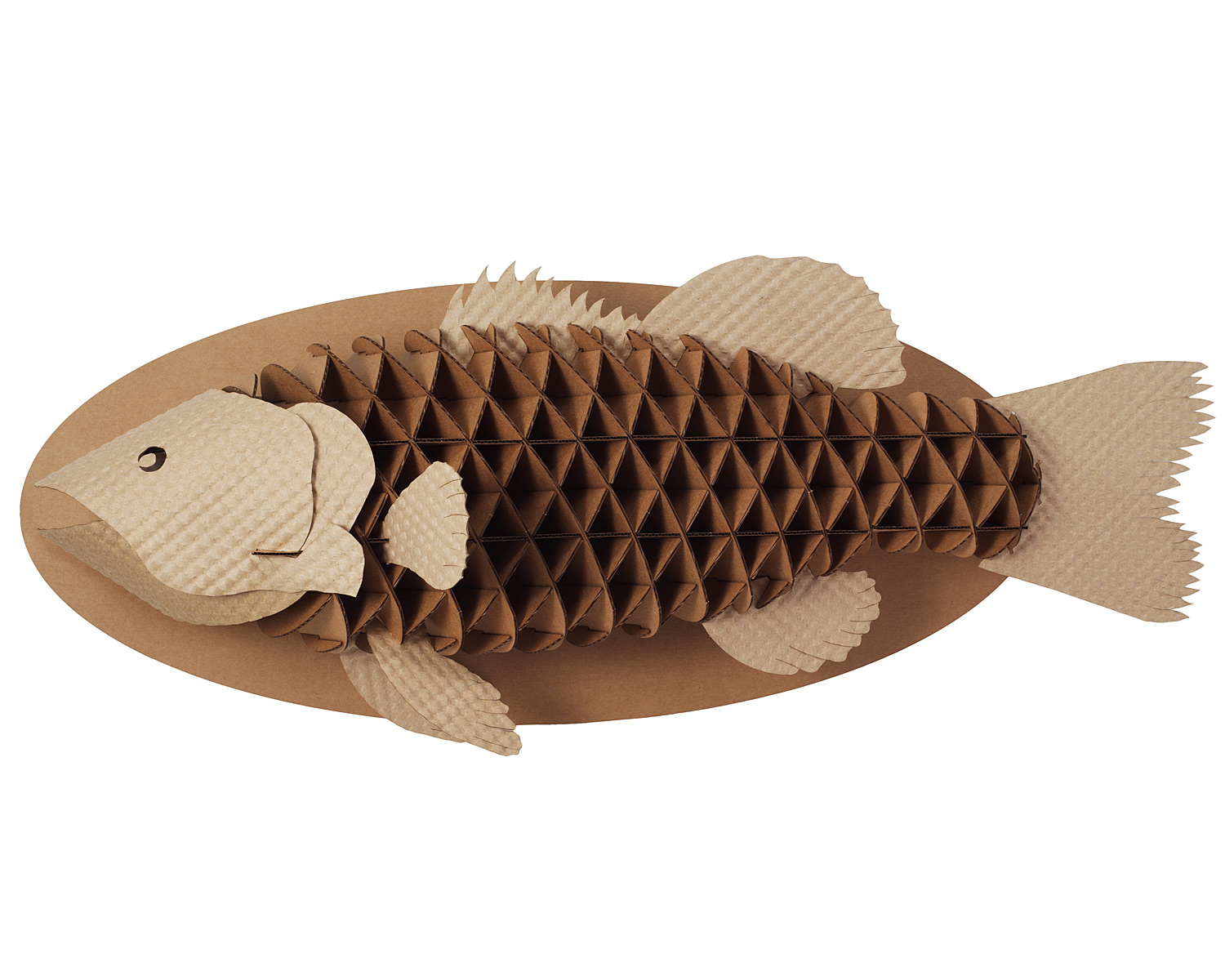 How to recycle recycled cardboard wall trophies for What to make with fish