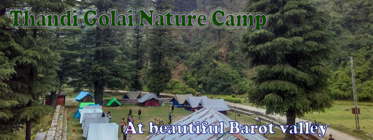Barot valley camping , trekking and adventure sports