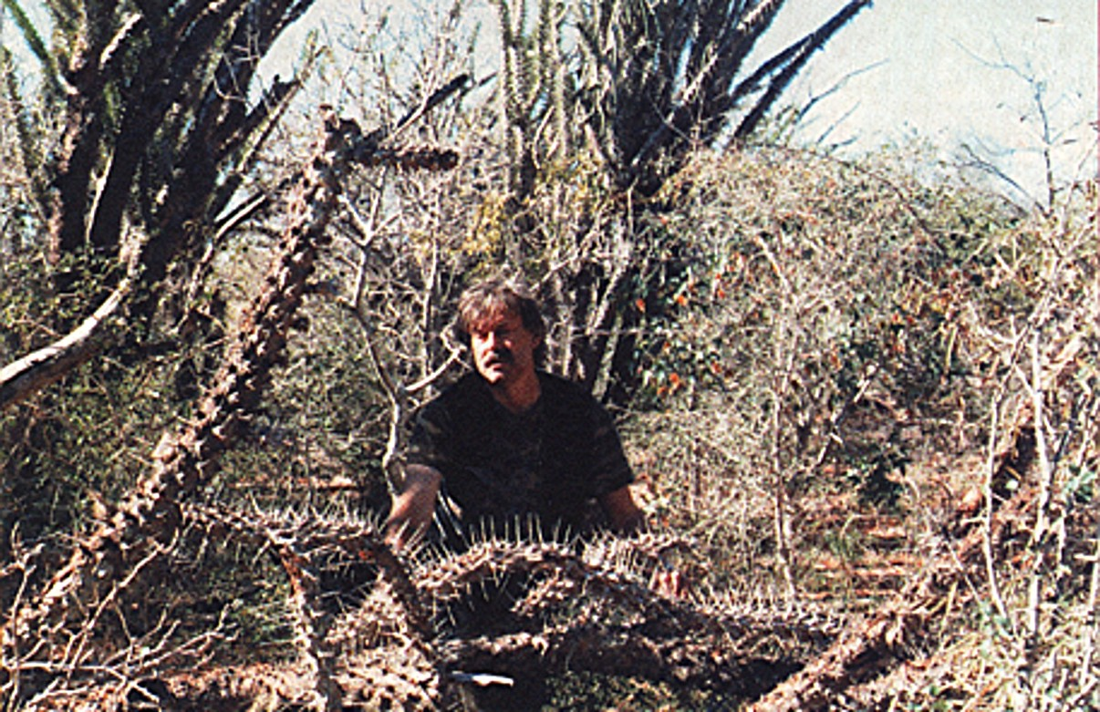 Très ShukerNature: THE MADAGASCAN MAN-EATING TREE - MORE THAN JUST A  DR26