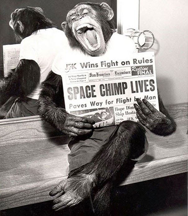 40 Must-See Photos Of The Past - A space chimp posing to camera after a successful mission to space, 1961