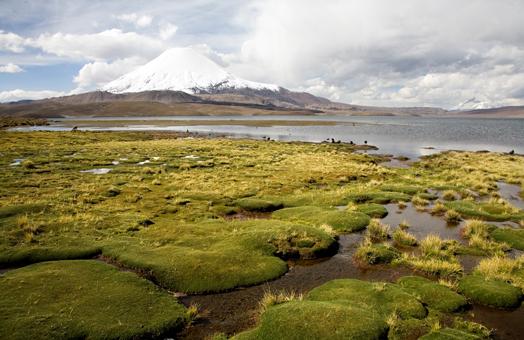 Maravillas del Norte de Chile: desde Arica a San Pedro de Atacama
