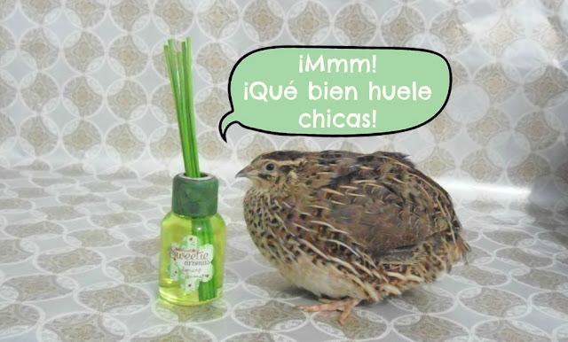 Ambientair-mikado-sweetie-aromas