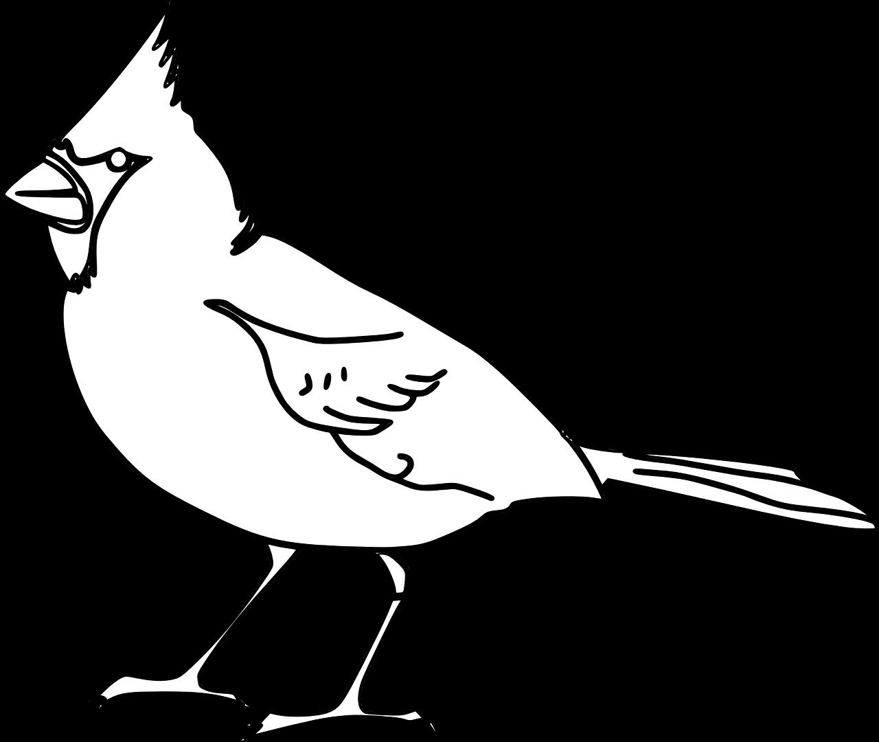 Mewarnai Gambar Burung Free Download