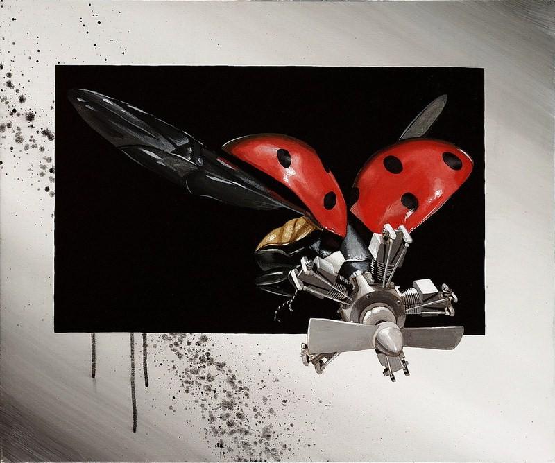 IMG:http://4.bp.blogspot.com/-_ZL8GFT239c/UfDEWahp23I/AAAAAAAA6EM/qKxruD8mCE4/s1600/New-Biology-Coccinellidae-Ladybug-Print-Robert-Bowen.jpg