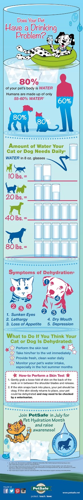 PetSafe Pet Hydration Month Infographic