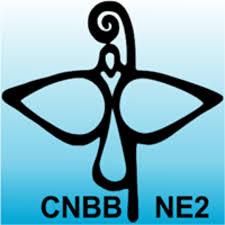 CNBB REGIONAL NORDESTE 2