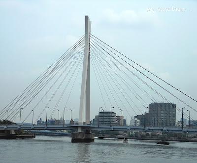 Chuo-ohashi bridge, Sumida river cruise, Tokyo