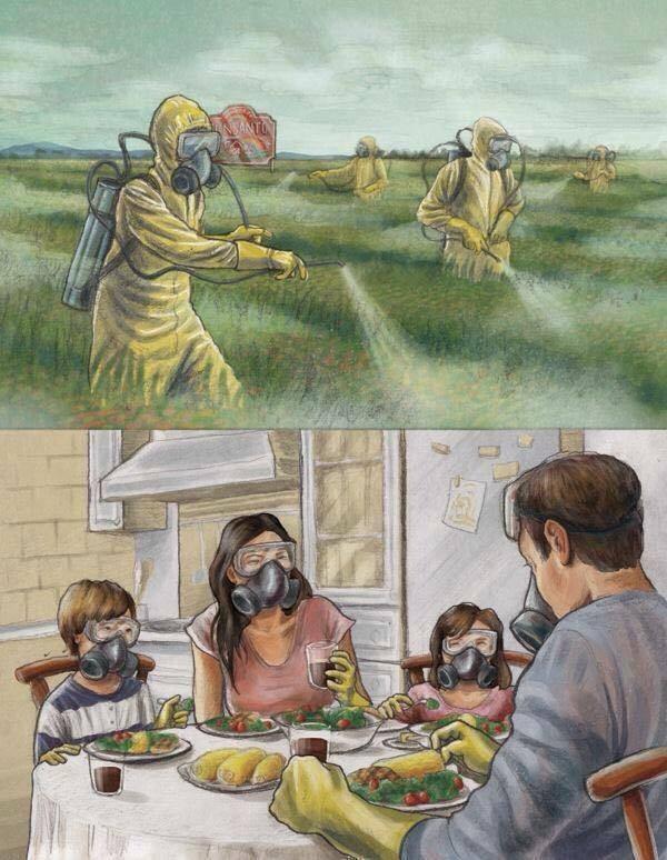 Semua yang kita makan adalah racun, gambar realita kehidupan