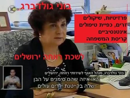 """בוני גולדברג - מנהלת לשכת רווחה ירושלים - כפיית """"טיפולים אינטנסיביים"""" גרמה לקריסת המשפחה"""