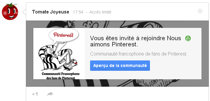 pinterest, fans, français, france, google plus, google+