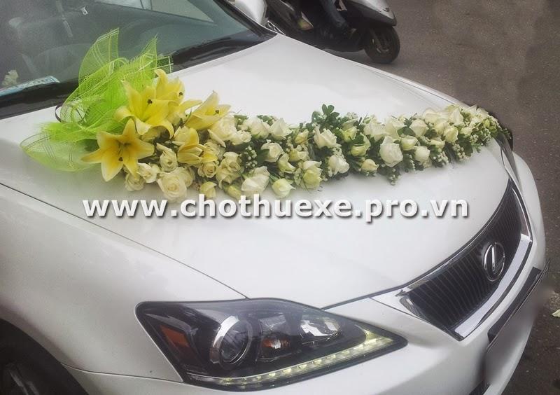 Cho thuê xe cưới Lexus IS250C mui trần màu trắng 2