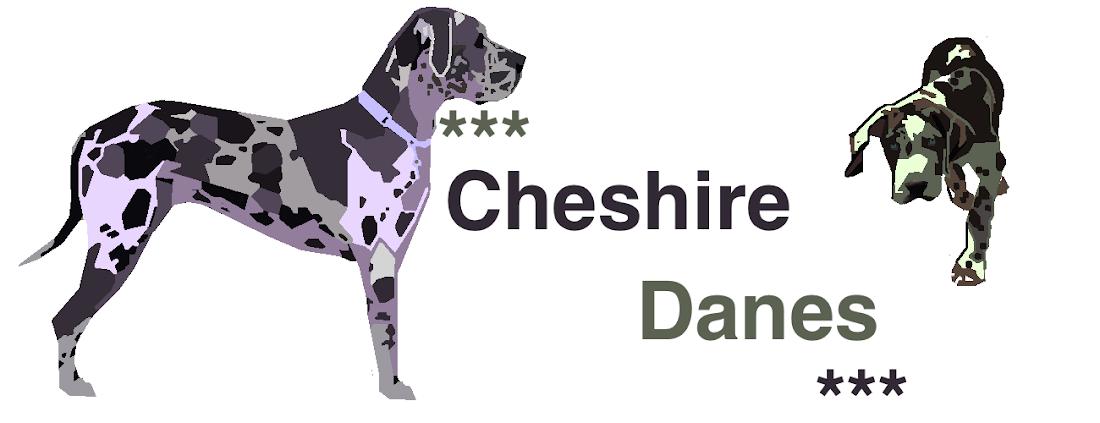 ***Cheshire Danes***