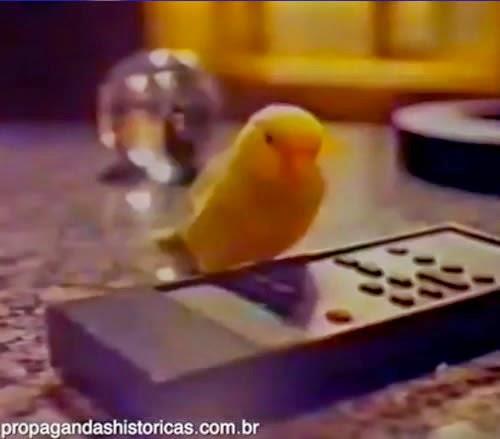Propaganda da linha de som AS 700 da Philco Hitachi: um pássaro comanda as operações do revolucionário controle remoto, daquela época.