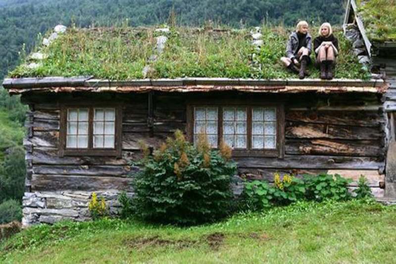 Jardines verticales y cubiertas vegetales mayo 2012 - Cubiertas vegetales para tejados ...
