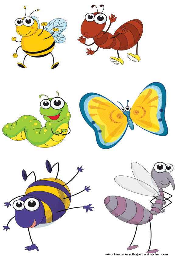 Laminas de insectos para imprimir for Laminas infantiles para imprimir