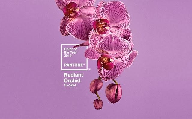 Orquídea Radiante color del año 2014