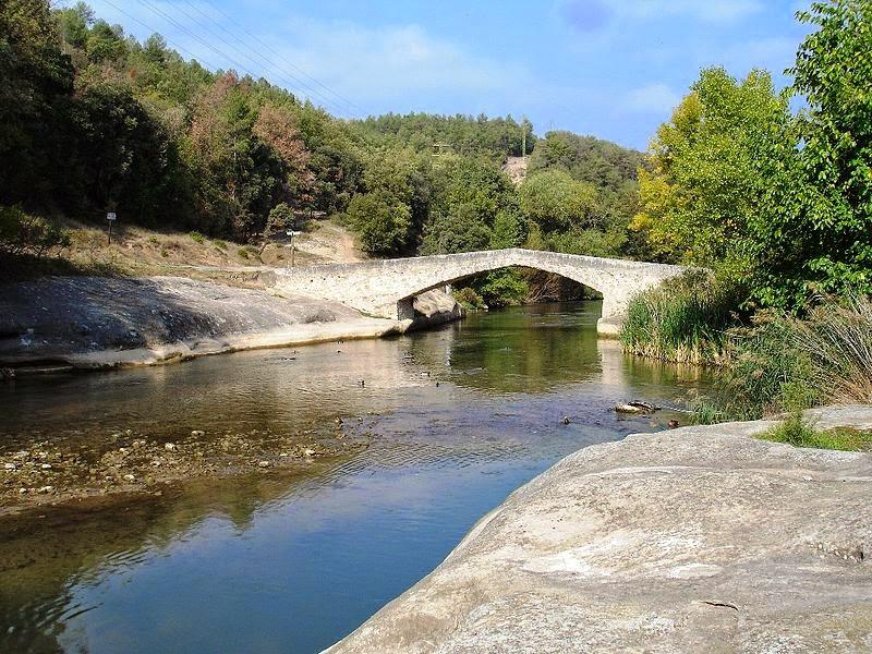 Puente cercano a la fábrica