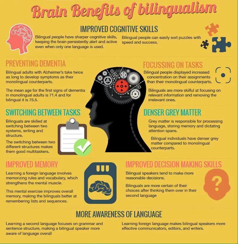 Your Brain on Language
