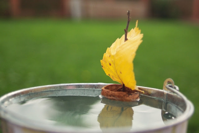 fall-leaves-craft-ideas