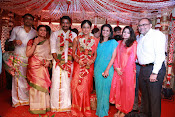 Amala Paul Al Vijay wedding Photos gallery-thumbnail-19