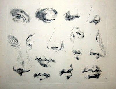 how to draw a realistic nose and mouth