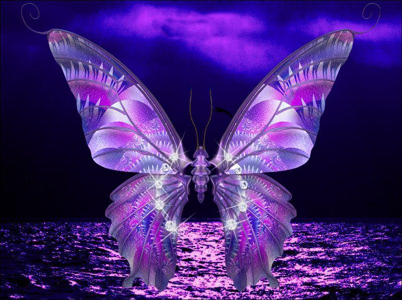 ZOOM FRASES: fondos mariposas hermosas,nuevos,butterfly