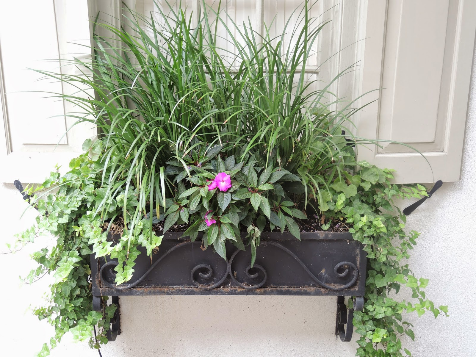 part sun shade window box charleston sc wrought iron planter box