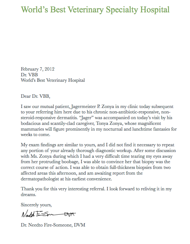 Medical Referral Thank You Letter Template