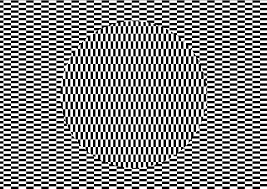 eye illusions with instructions