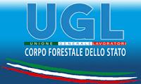 http://uglcorpoforestale.it/no-alla-soppressione-del-cfs/3977-riforma-p-a-sindacati-corpo-forestale-sit-in-il-15-01-per-dire-no-all-assorbimento-nei-carabinieri