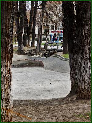 lac secat si pod parc ion voicu ioanid bucuresti