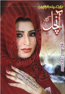 Aanchal Digest July 2013 Download Free